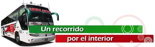 www.rapidoochoa.com
